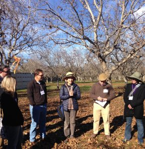 Dr. Louise Jackson (center) highlights healthy soils climate solutions at Dixon Ridge Farms, Dec. 1, 2015.