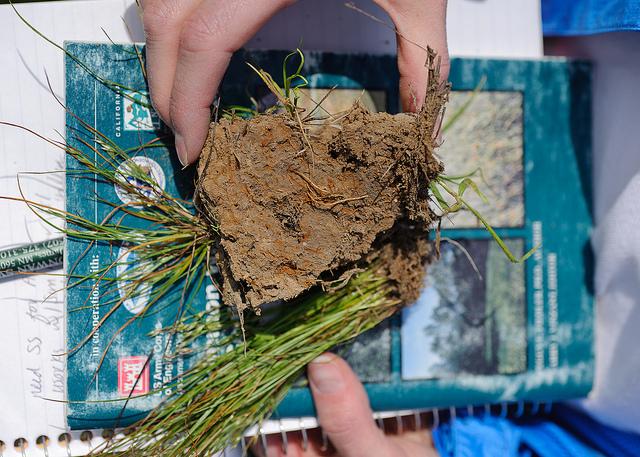 Soil Research-Howard Ranch-Credit USDA NRCS