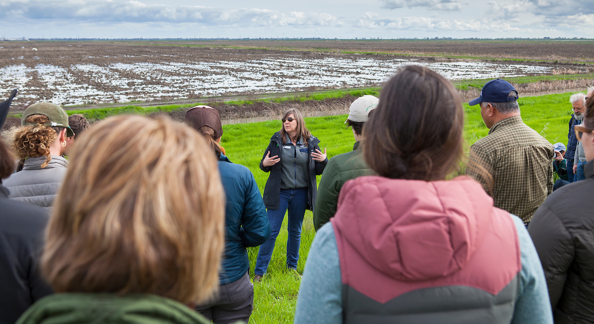 Heather Nichols (Yolo County RCD) and Khara Strum (Audubon Society) presentation on hedgrows for farming; CalCAN Summit - Farm and Ranch tour or River Garden Farms for regenerative agriculture