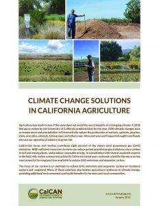 cc solutions report
