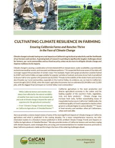 climate resilience pub