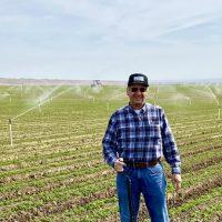 Bolthouse Farms (Kern County)