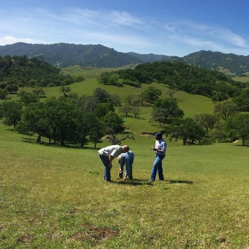 California Rangeland Trust (Calaveras, Yolo, Humboldt & Monterey Counties)