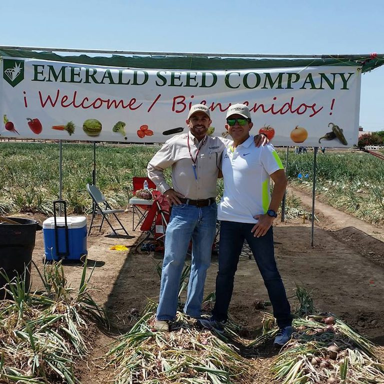 Emerald Seed Company (Imperial County)