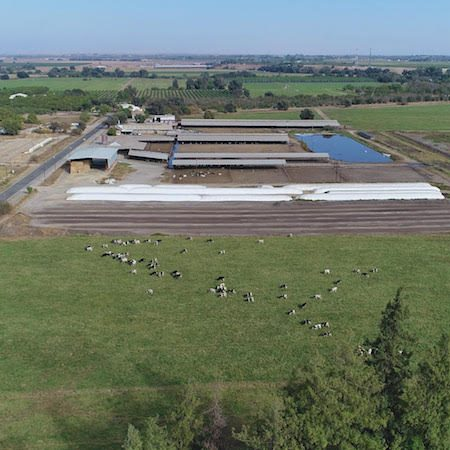 Magneson Dairy (Merced County)