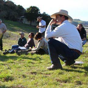 Morris Grassfed Beef (San Benito County)