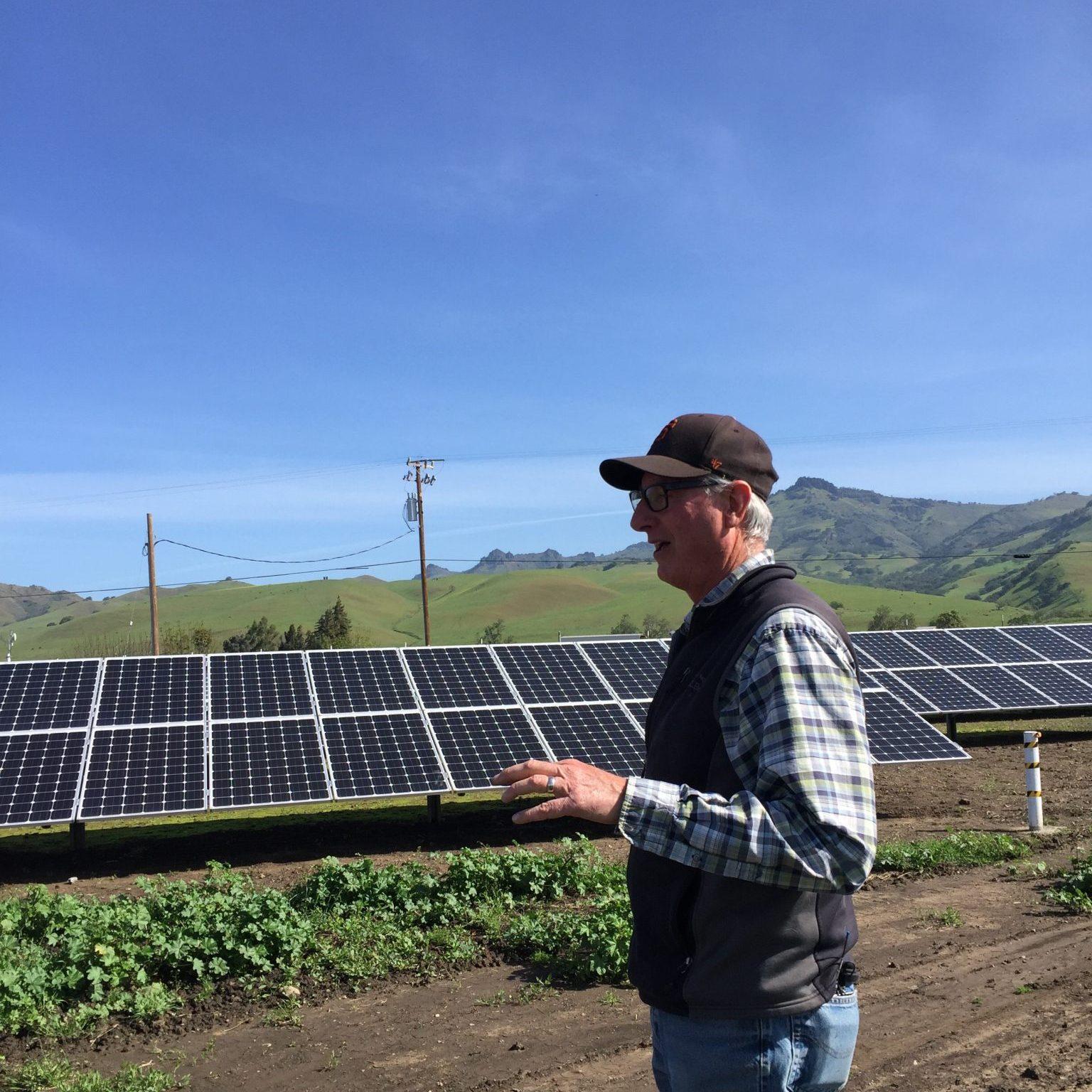 Pinnacle Organic (San Benito County)