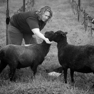 Robert Sinskey Vineyards (Napa County)