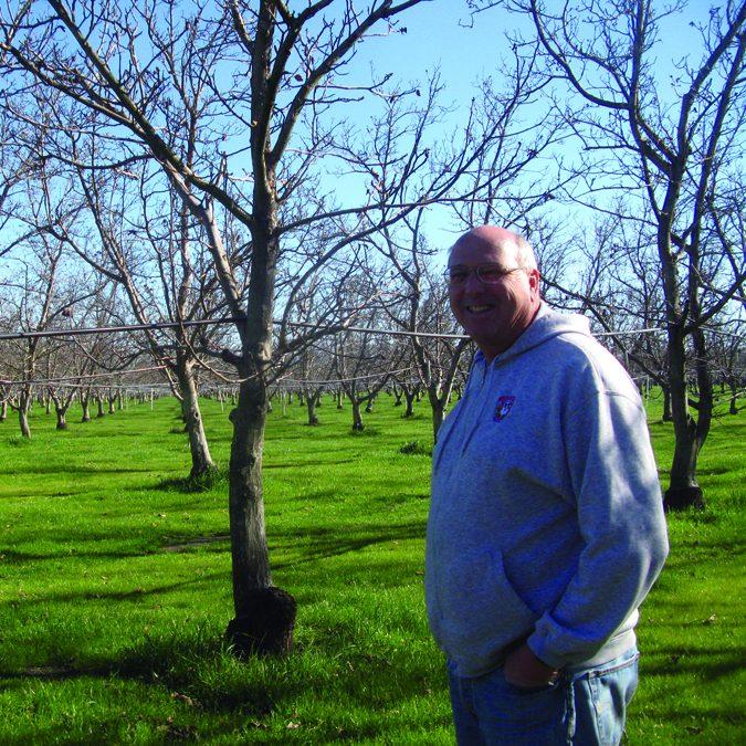 Dixon Ridge Farms (Yolo County)