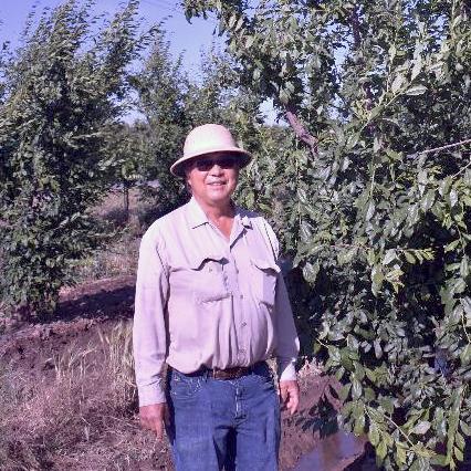 Steve Fukagawa Farms (Fresno County)