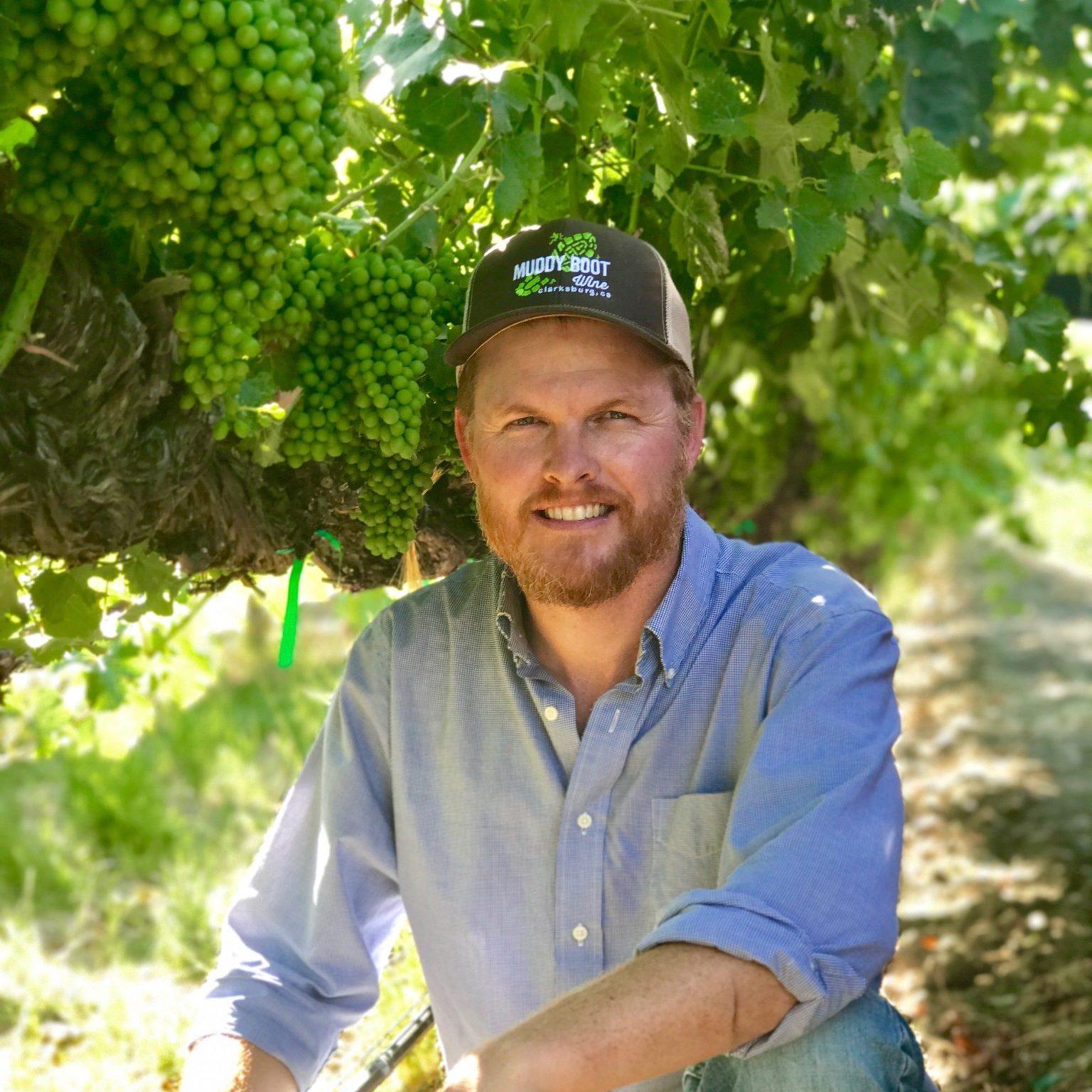Wilson Vineyards (Yolo County)