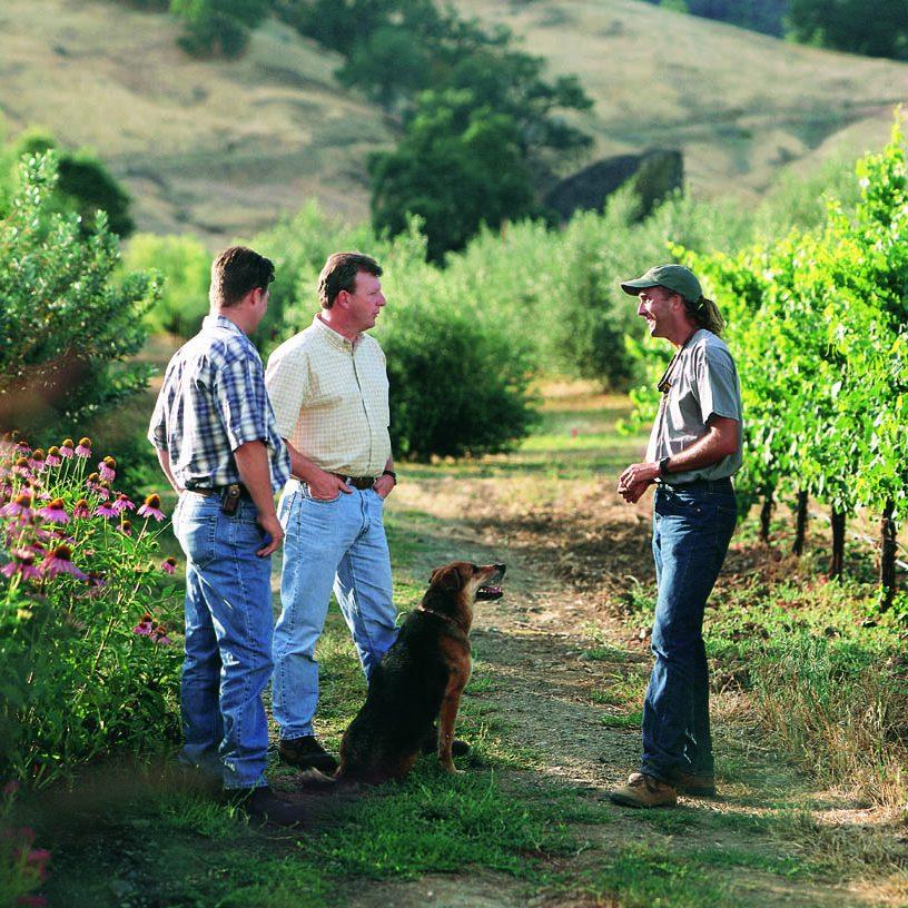 Fetzer Vineyards (Mendocino County)
