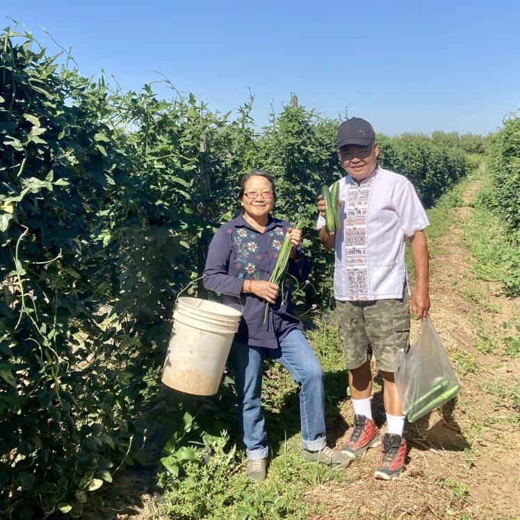 Rosie Lee and Cha Moua (Merced County)